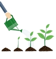 Watering can and plants vector image vector image