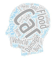 Do Not Buy Flood Damaged Cars text background vector image vector image