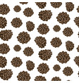 fir cones seamless white background pattern vector image vector image