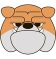 Funny Bulldog vector image vector image