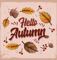 hello autumn lettering with falling leaves and nut vector image vector image