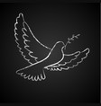 peace day background with dove on blackboard vector image vector image