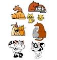 set pet best friends icons vector image