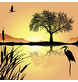 Sunset lake vector image vector image