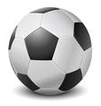 Detailed black fringe football ball vector image
