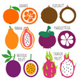 brush grunge fruits icons set vector image vector image