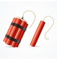 Detonate Dynamite Bomb Set vector image vector image