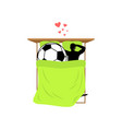 lover soccer guy and football ball in bed lovers vector image vector image