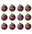 mangosteen with different emoticon vector image vector image