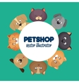 pet shop poster with lovely cats and green vector image vector image