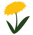 blooming yellow flower with green leaves or color vector image