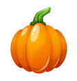 cartoon pumpkin on the white vector image vector image