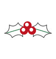 christmas holly berry leaves decoration ornate vector image