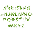 eco alphabet vector image