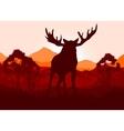 Elk in wild nature landscape vector image