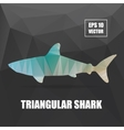 Poly design Shark triangular Shark vector image