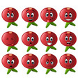 pomegranate with different emoticons vector image vector image