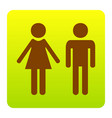 male and female sign brown icon at green vector image