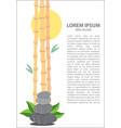 bamboo sun stones vector image