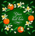 frame orange and flowers vector image