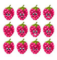 raspberry with different emoticons vector image vector image
