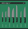set number one kitchen knives vector image vector image