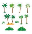 set tropical palm trees with green leave and vector image