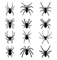 spiders vector image vector image
