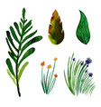 watercolor spring floral and leaves collection vector image vector image