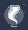 twister weather symbol icon vector image