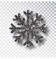 black snowflake christmas black decoration vector image vector image