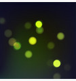 stock fireflies night tropical vector image