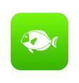 surgeon fish icon digital green vector image