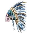 American native hat and skull vector image