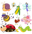 Different insects vector image vector image