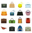 female leather handbags and male accessory vector image vector image