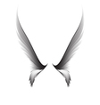 gray pair wings vector image vector image
