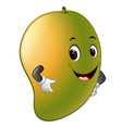 mango with face vector image vector image