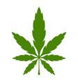 Marijuana pot weed leaf