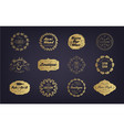 set vintage golden business badges vector image