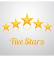 Set of Gold Stars Icon Five Stars Icon vector image