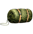 Camouflage sleeping bag on white vector image vector image