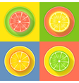 Citrus fruits four icons vector image vector image