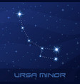 constellation ursa minor little bear vector image vector image