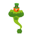 Genie leprechaun magical spirit of St Patricks Day vector image vector image