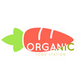 organic food station carrot background imag vector image