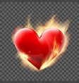 red heart burns with fire vector image vector image