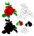 rose red with buds and leaves natural and outline vector image