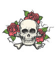skull with rose flowers vector image vector image