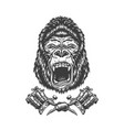 vintage monochrome angry gorilla head vector image vector image